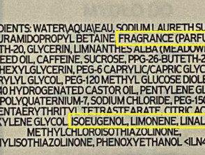 shower-gel-ingredients__protectwyjqcm90zwn0il0_focusfillwzi5ncwymjisingildu0xq-7168345-3519764