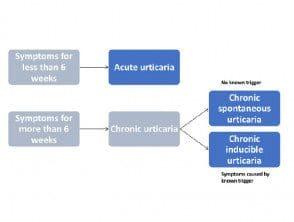urticaria-figure-1__protectwyjqcm90zwn0il0_focusfillwzi5ncwymjisingildfd-3861886-3960212